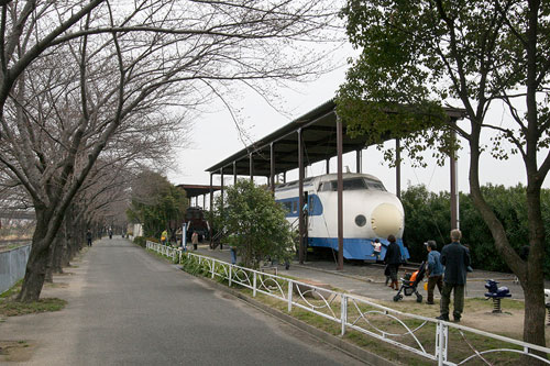 桜並木と新幹線
