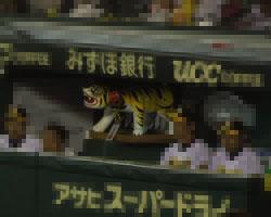 甲子園ベンチ1