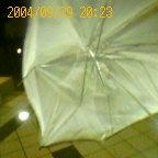 傘が.jpg