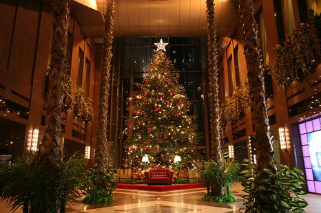 ホテル阪急インターナショナルのツリー1